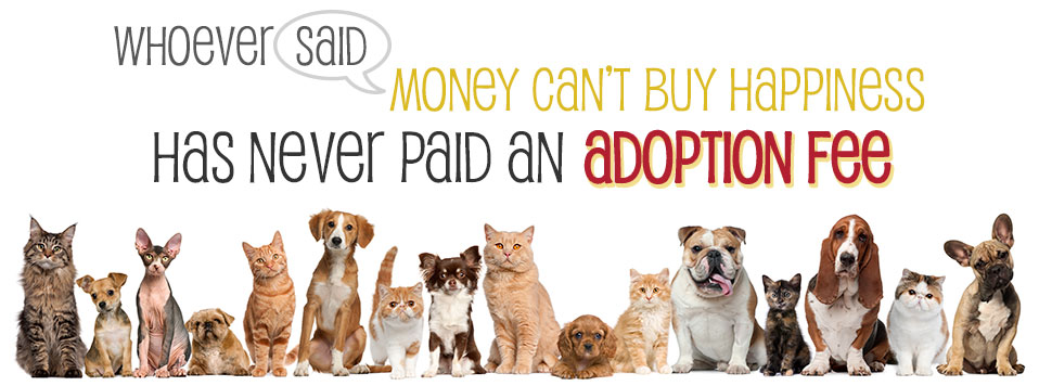 adoption-fee-banner.jpg
